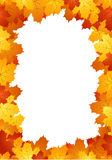 Autumn leaves frame. Vector illustration. Stock Image