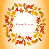 Autumn leaves frame. Vector illustration. Floral abstract pattern. Fashion Graphic Design. Symbol of autumn, eco and natural. Brig Stock Image