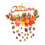 Autumn leaves frame  watercolor one Stock Images