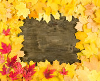 Autumn leaves frame on wood background Royalty Free Stock Photos