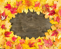 Autumn leaves frame on wood background Royalty Free Stock Photo