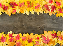 Autumn leaves frame on wood background Stock Image