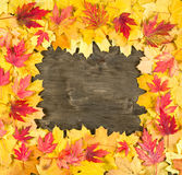 Autumn leaves frame on wood background Royalty Free Stock Photography