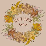 Autumn leaves frame for your text Royalty Free Stock Photo