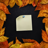 Autumn leaves framed black board with sticker Stock Photos