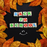Autumn leaves framed chalk board Stock Images
