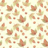 Autumn Leaves Fundo floral da aquarela Imagens de Stock