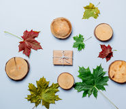 Autumn leaves and gift box Stock Image