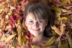 Autumn leaves girl. Portrait of a beautiful young girl in autumn leaves Stock Photos