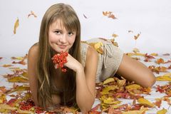 Autumn leaves girl. A beautiful young autumn leaves girl royalty free stock photo