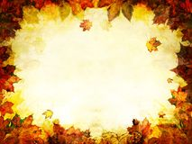 Autumn leaves golden frame background. Texture Royalty Free Stock Image