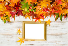 Autumn leaves and golden frame for picture text Royalty Free Stock Photos
