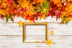 Autumn leaves and golden frame on wooden background Stock Image