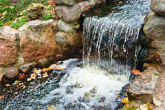 Autumn leaves are gone by stream Stock Images