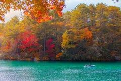 Autumn Leaves in Goshikinuma-Meer, Fukushima stock afbeelding