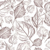 Autumn leaves graphics, seamless pattern Royalty Free Stock Image