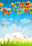 Autumn leaves and grass. With space for text Royalty Free Stock Photography