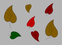 Autumn leaves on a gray background Royalty Free Stock Photography