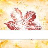 Autumn leaves greeting card Royalty Free Stock Images