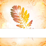 Autumn leaves greeting card Royalty Free Stock Photos