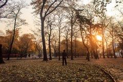 In the autumn Stock Photo