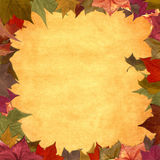 Autumn leaves grunge frame background Stock Photos