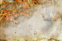Autumn Leaves with a Grunge Texture Stock Photos