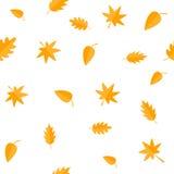 Autumn Leaves Grupo alaranjado amarelo da folha Carvalho, bordo, vidoeiro, Rowan Papel de envolvimento sem emenda do teste padrão Fotos de Stock Royalty Free