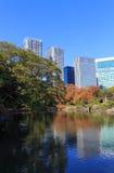 Autumn leaves in Hamarikyu Gardens, Tokyo Royalty Free Stock Photos