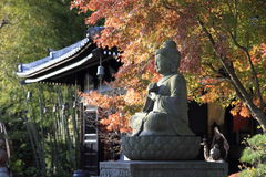 Autumn leaves in Hasedera Royalty Free Stock Image