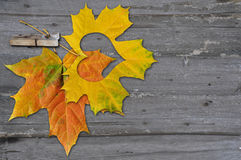Autumn leaves with heat Royalty Free Stock Photo
