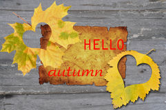 Autumn leaves with heat Royalty Free Stock Photos