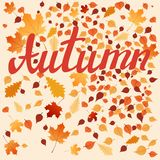 Autumn Leaves stock de ilustración