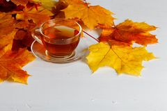 Autumn leaves, hot steaming cup of tea on wooden background Stock Images