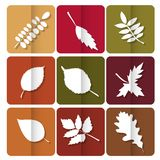 Autumn leaves icon. Red, yellow and green leaves of forest trees. Are used as buttons for web design Royalty Free Stock Photos