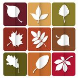Autumn leaves icon. Red, yellow and green leaves of forest trees. Are used as buttons for web design Royalty Free Stock Photography
