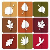 Autumn leaves icon. Red, yellow and green leaves of forest trees. Are used as buttons for web design Royalty Free Stock Images