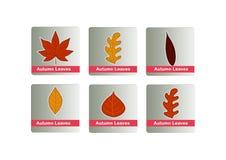 Autumn leaves icon set Stock Photos