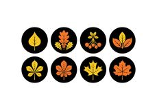 Autumn leaves icons. Vector illustration. Autumn leaves icons in modern line style. Vector illustration on a black background royalty free illustration