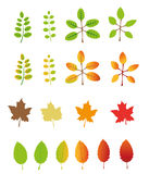 Autumn leaves illustrations and icons Stock Photo