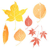 Autumn leaves. Illustrations by watercolor paint Royalty Free Stock Photo