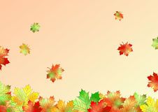 Autumn leaves illustrator cs4 Stock Images
