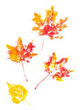 Autumn leaves imprint watercolor Stock Photos