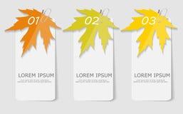 Autumn Leaves Infographic Templates per l'affare Fotografia Stock