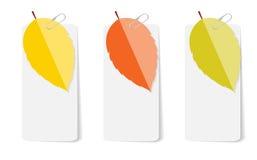 Autumn Leaves Infographic Templates per l'affare Fotografie Stock Libere da Diritti