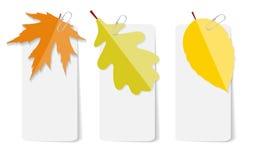 Autumn Leaves Infographic Templates pour des affaires Image libre de droits