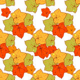 Autumn leaves invitation Royalty Free Stock Photo