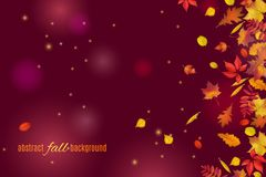 Autumn leaves isolated on beautiful dark brown background with lights and sparkles. Abstract hello Autumn background for your greeting cards design or website Stock Photos
