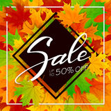 Autumn leaves and lettering Sale on black background vector illustration