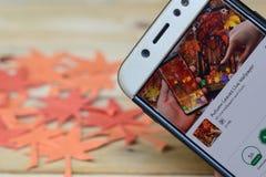 Autumn Leaves Live Wallpaper App sullo schermo di Smartphone fotografie stock libere da diritti